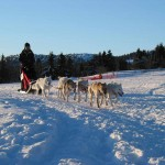 sleigh-ride on Vaset